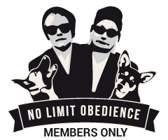 VIP Blog - No Limit Obedience